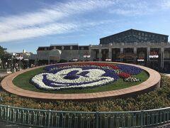 ディズニーランドの花壇はミッキー! 記念撮影のカメラマンに撮影してもらえるスポットです。