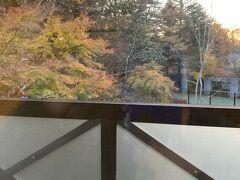 動物たちと、さよならして雲場池近くの軽井沢の宿に着きました。良い感じに紅葉してました。