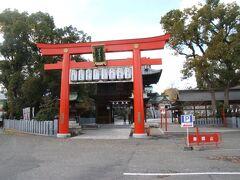 上の碑の写真から歩いて10分弱で伊豫豆比古命神社に到着しました。地元では椿神社と呼ばれるこの神社は創建は神話の時代とされていて2012年には御鎮座2300年祭が行われています。ということで、創建は紀元前288年ということになります。