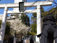 乃木神社はたぶんはじめて 一の鳥居