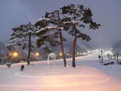 今季初めて夜行バス(乗車率6割くらい) 新宿から朝6時到着 8年連続17回目の白馬五竜、このごろ最も多く滑っているスキー場