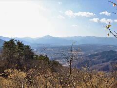 宝登山の山頂に到着して最初に目に飛び込んでくるのは、秩父盆地の町とその向こうにそびえる武甲山の絶景。  臘梅の時期は、更に臘梅花の黄色が彩りを添えてくれる。
