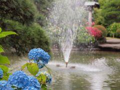 二十三夜尊桂岸寺の保和苑 元禄時代、徳川光圀公がこのお寺の庭を愛されて保和園と名付けられたのが始まりといわれています。 昭和初期に、地元有志の手によってお庭の拡張整備がなされ、池に築山を配した純日本庭園になり、名前も「保和苑」となったのだそうです。