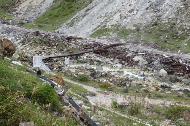 木道から木橋を渡る