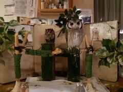 西浦温泉、和のリゾート「はづ」に到着、フクロウさんがいました。最初は飾りと思ったのに、動いたのでびっくり。