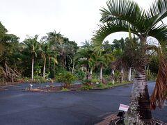 そしてかなり迷ったのですが、亜熱帯農業センターの公開ゾーンへ。その名の通り農業研究所で、公開ゾーンと未公開ゾーンがあり、公開ゾーンへの行き方がかなりわかりにくかったです。