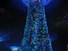 ガーデンズバイザベイに到着 不思議な建物だなぁ 夜ライトアップがキレイなのでオススメです