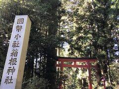 箱根神社にお詣りします。
