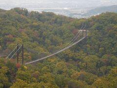 延長280m、最高地上高50m。木床板人道吊り橋としては国内最大級です。