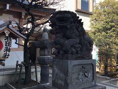キャットストリートの裏に神社がありました。 狛犬がずんぐりしていて可愛らしい。