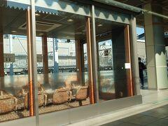 長野駅は小学生以来の降りたことない。
