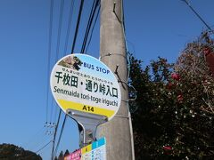 丸山千枚田までのバスも無料で乗ることができたので急遽来ることにしました。12時着。 田んぼをチラッと見て12時40分発の帰りのバスに乗ろうと考えていましたが、丸山千枚田に到着するまでに徒歩20分と書いてあったので無理なことがわかりました…。