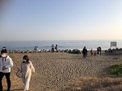 菜の花ガーデン  海への小径を行くと表浜海岸に出た