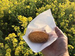 ちっちゃい茶店 菜の花や //菜の花コロッケ1個150円