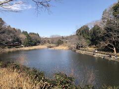 東名高速道路の下をくぐり、泉の森公園へ しらかしの池は、引地川の氾濫を防ぐための調整池です
