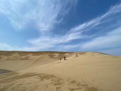 鳥取といえばまずはここ、鳥取砂丘から旅はスタートします。 写真で見ても分かるようにどこまでも続く真っ青な空! 砂丘が一番映える天気です。 ただし、写真には写っていませんが所々に雪も残っていました。 そしてこの日はものすごい強風で、全身砂まみれに。笑 ポケットや髪の中まで砂が入り込み、しばらく歩くたびに砂を撒き散らしていました。でも何度行っても鳥取砂丘はいいところです。これ程非日常感を味わえるところは日本の中でも数少ないんじゃないでしょうか。