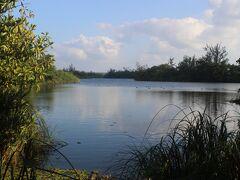 南大東島は多くの池沼がありますが、その中でも一番大きな大池。