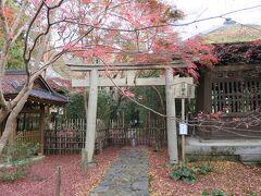 「八瀬駅前」のバス停から1つ目「上橋」で下車して蓮華寺に来ました。  歩いても15分とかからないけど、バス二日券があるので使います。 これで元は取れるかなぁ~。  小さな山門をくぐると一面に紅葉が広がっていました。
