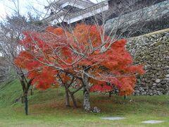とても寒いですけど紅葉がいい感じの色でした。とても寒いですけどね・・・。