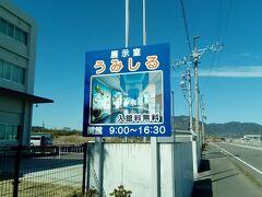 近くには、ミニ水族館といえる施設、「うみしる」があります。サメやエビ、魚など色々な生き物を見ることができます。静岡県の漁港食堂の紹介もありました。