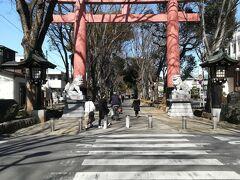 そのまましばらく東へ歩き 氷川参道に出ました。 ここからは参道を歩いて氷川神社に向かいます。
