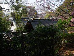 馬絹神社 屋根が綺麗に見えました。