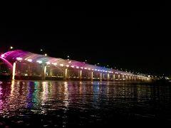 20:30~ 190個の照明でライトアップされた噴水ショーは圧巻。