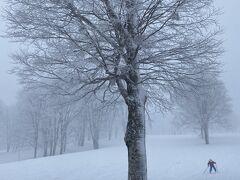 滑らない雪、ブレーキがかかる上の平