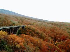 城ヶ倉大橋。紅葉の名所です。8割がた終わっていましたが、それでも落葉樹のボリューム感で、まさに枯れ木も山の賑わい。