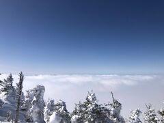 頂上に降り立ち景色を眺めると、北アルプスの山々も覆い隠す大雲海が! 樹氷は蔵王ほどは育ってませんがそれでも結構「らしく」育ってました。 景色を堪能しながら滑って行きます。午前中冷えていたこともあり雪質もさらさら。あ~最高、来て良かった。
