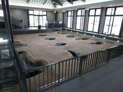 建物内には大型建物跡の復元があります。