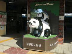 串本から50分で関西の誇るリゾート白浜駅に到着です。 私がご幼少のみぎりは、白浜といえば温泉と海水浴だったんですが、今は「パンダのまち」なんですね。 白浜のアドベンチャーワールドでは、毎年のように赤ちゃんパンダが生まれているのに、なんで上野動物園だけが赤ちゃんが生まれると大騒ぎなんだろうって言われてますよね(笑) 私が行った時も、丁度パンダに妊娠の兆候があるので、観覧中止って地元のテレビで流していました。