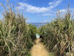 本日のメインイベントへ。古宇島の北側にある「ティーヌ浜」に向かいます。