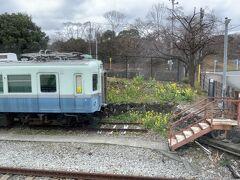 伊豆高原駅の手前では、2年前にラストランで乗車した「100系」が留置線で放置プレイ…塗装の劣化も始まっていて、ひたちなか海浜鉄道の「キハ222」のような朽ちた姿は見たくありませんね…