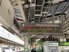 そして東京駅到着後、弁当を買い込み185系の特急「踊り子」に乗車。