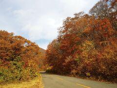 到着時間が遅めなので、ショートカットして八合目まで有料道路。道の紅葉が綺麗です。