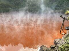 バスに乗って、6地獄め、血の池地獄へ。ここは名前の通り赤みのある池に温泉が沸いている。