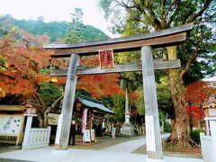 高麗神社は、高句麗からの渡来人 高麗王若光を主祭神として祀る社です。
