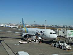 1日目です。  金沢から北陸新幹線に乗り、東京駅を経由して羽田空港へ。羽田空港から旭川へ向かいます。旭川空港へはNH4783・エアドゥ共同運航便、シップはボーイング767-300です。toraji、初めてのエアドゥ便です。シップは定刻に羽田空港を出発しました。