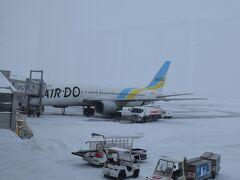 シップは定刻より少し遅れて雪の旭川空港に到着しました。一面銀世界。というか見渡すところは真っ白です。  旭川空港からバスで市内に向かいます。