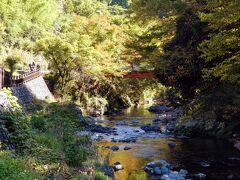 受付を終えると人もばらけてきて、高麗川横手渓谷は お天気が良いこともあって気持ちよい。