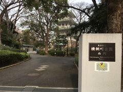 旧安田庭園のすぐ近くに横綱町公園という公園があります。