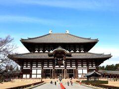 左右対称に広がる日本の美!! 目の前に現れた壮大なる金堂(大仏殿)に圧倒されるわー。
