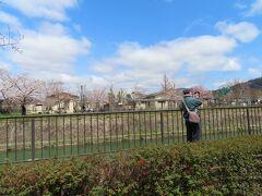 動物園の中が見えています   京都に来ると 歴史関連のところばかり行ってしまい  なかなか動物園にまで 脚がのびない・・・