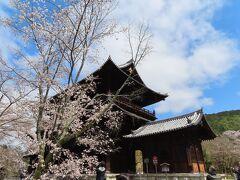 京都に来るたびに来ている気がします この三門にも  以前から何回か上がっています