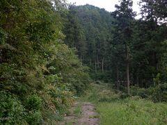 しかし久々のテクテク遍路で勘が働きません。遍路道の標識を見逃し、林道の行き止まりで引き返します。