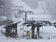 しっかりと雪が降ってます。 重たい雪です。