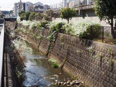 黒須田川遊歩道