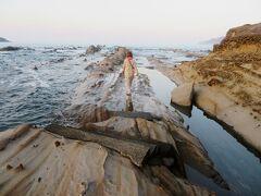 8/17 今日も強行軍日程なので朝食前の夜明けに竜串、足摺岬へ車を飛ばしました。岬への道でも、短距離で選んだ国道が山中で一本道に変わり、前日と同じ羽目になって時間を要しました。四国は森が深く、林業がさすがに盛んです。まず、観光スポットとして名高い竜串海岸に立ち寄りました。海岸の砂岩地層が竜の背中のように浸食されていて興味ある地形です。