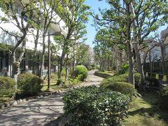 洲崎神社社殿の裏に架かる弁天橋を渡ったところに造られている、500mほどの細長洲崎川緑道公園。 車は通れず、自転車道路と歩行者用道路が分かれているため、安心して歩くことができます。緑豊かで、道の両側と中央にはケヤキやカエデなどの木々が植えられ、一般住宅やマンションに挟まれているため静かです。きれいに整備されていて気持ちよく散策することができました。